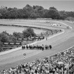 Kuda-kuda bergemuruh menuruni Goodwood langsung menuju tiang furlong terakhir